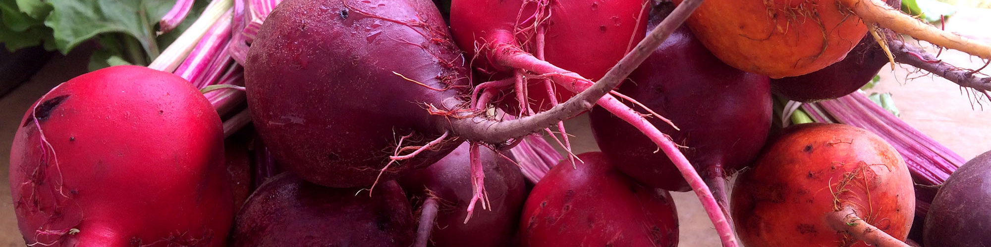 Beets from Full Sun Farm